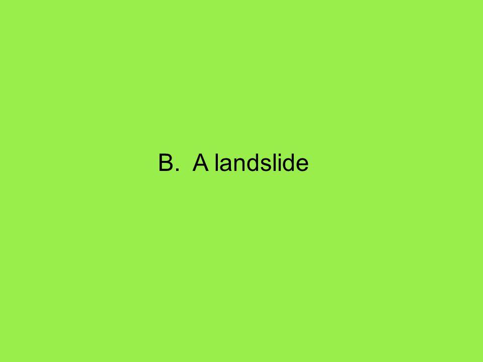 B. A landslide