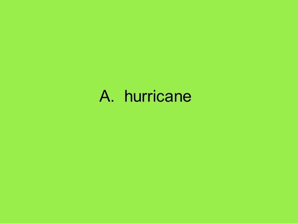 A. hurricane