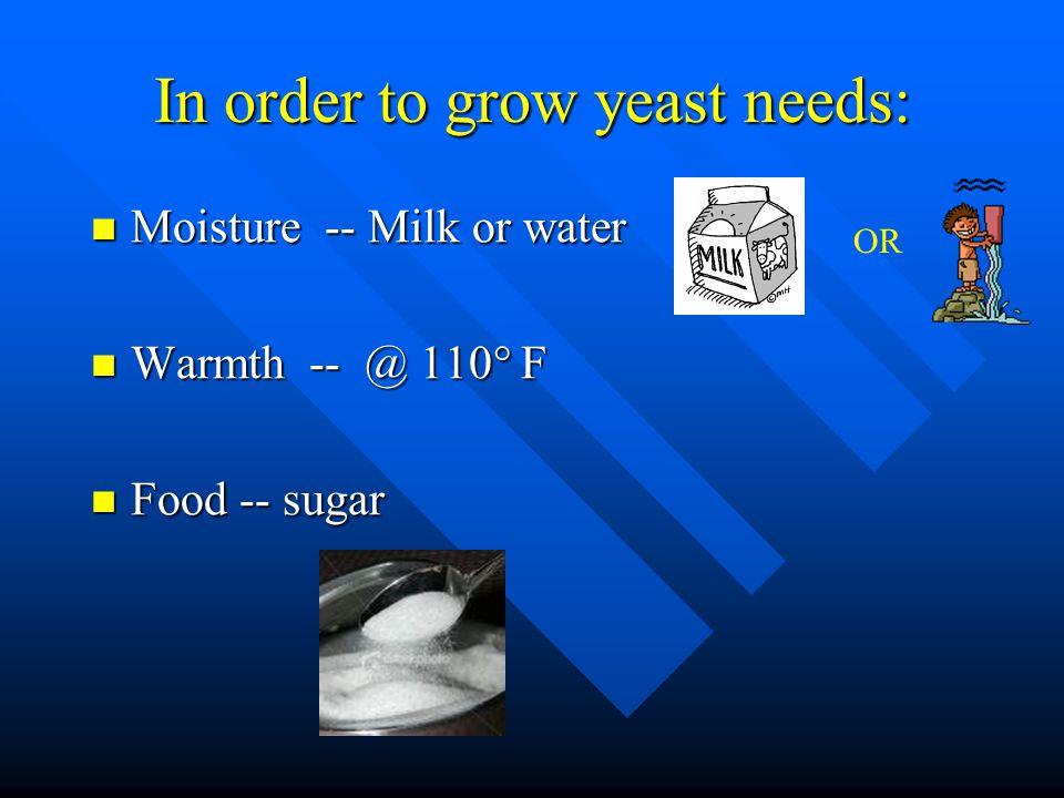 In order to grow yeast needs: Moisture -- Milk or water Moisture -- Milk or water Warmth -- @ 110° F Warmth -- @ 110° F Food -- sugar Food -- sugar OR