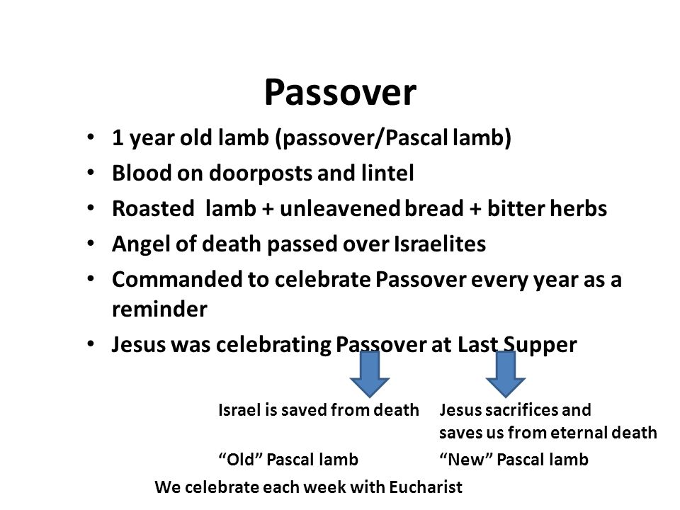 Passover 1 year old lamb (passover/Pascal lamb) Blood on doorposts and lintel Roasted lamb + unleavened bread + bitter herbs Angel of death passed ove