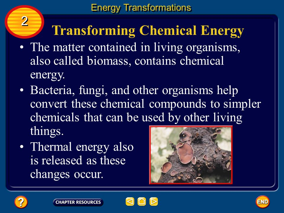 Transforming Chemical Energy Inside your body, chemical energy also is transformed into kinetic energy. The transformation of chemical to kinetic ener