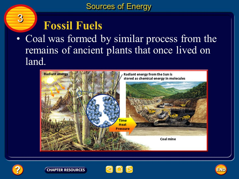 Fossil Fuels Fossil fuels are coal, oil, and natural gas. Oil and natural gas were made from the remains of microscopic organisms that lived in Earths