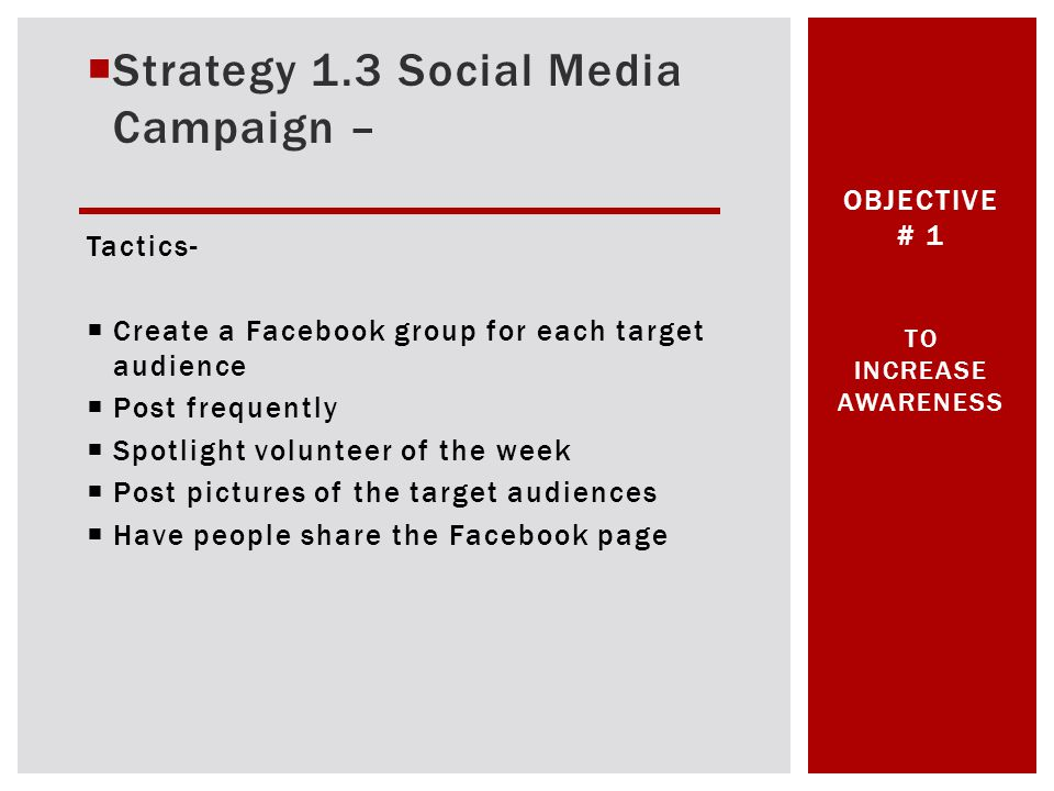 Strategy 1.3 Social Media Campaign – Tactics- Create a Facebook group for each target audience Post frequently Spotlight volunteer of the week Post pictures of the target audiences Have people share the Facebook page OBJECTIVE # 1 TO INCREASE AWARENESS