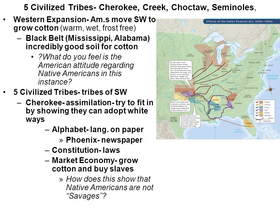 5 Civilized Tribes- Cherokee, Creek, Choctaw, Seminoles, Western Expansion- Am.s move SW to grow cotton (warm, wet, frost free) –Black Belt (Mississip