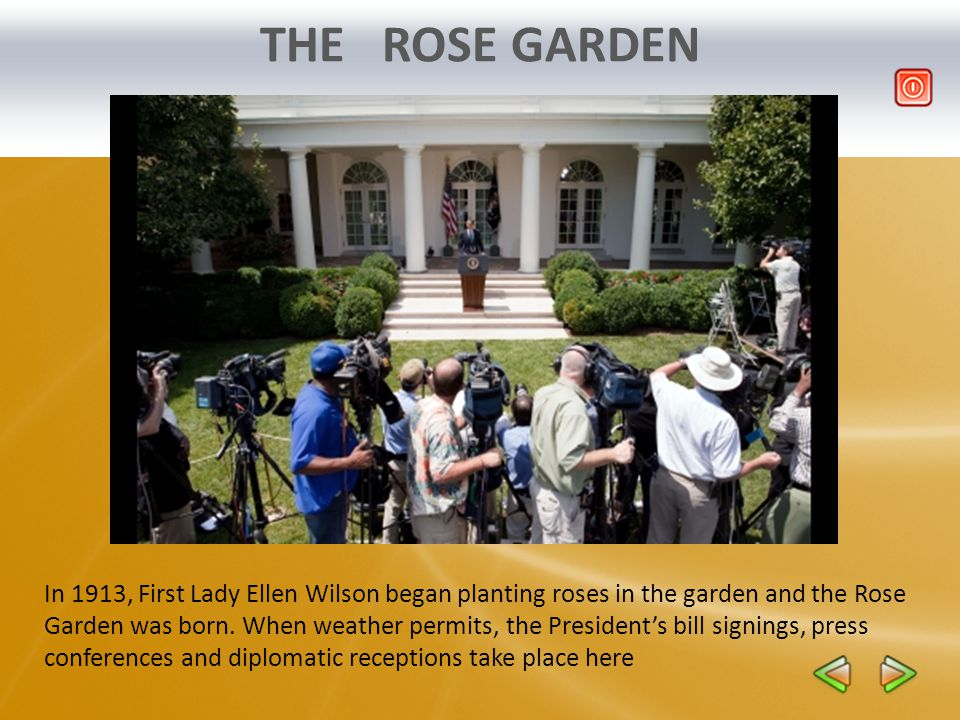 THE ROSE GARDEN In 1913, First Lady Ellen Wilson began planting roses in the garden and the Rose Garden was born. When weather permits, the Presidents