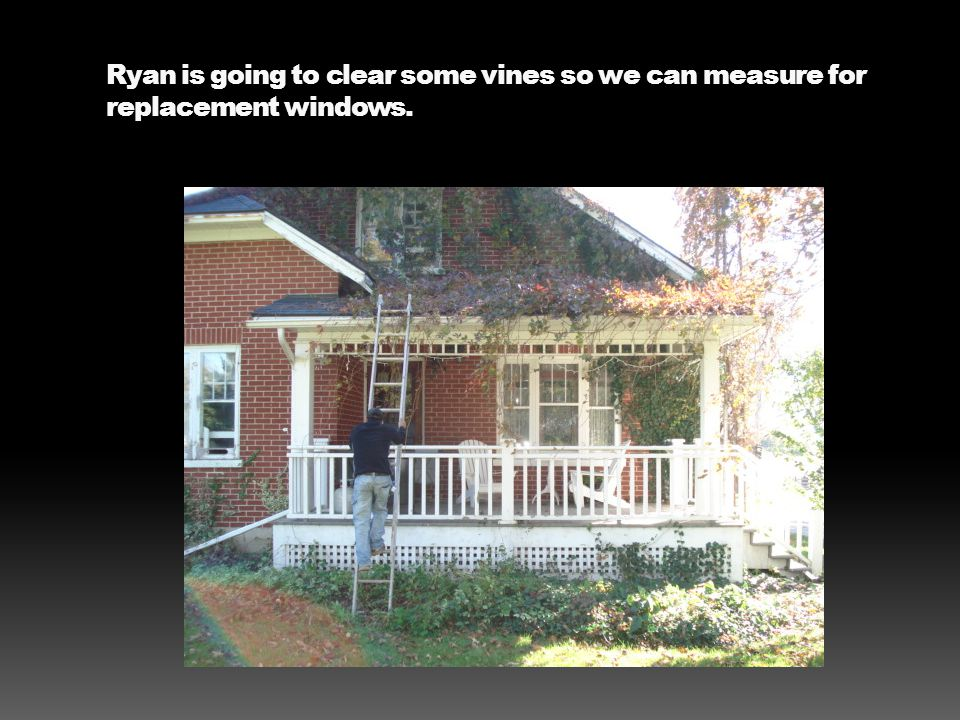 Ryan is going to clear some vines so we can measure for replacement windows.