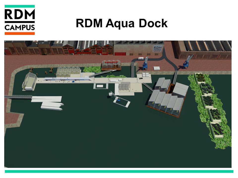 RDM Aqua Dock
