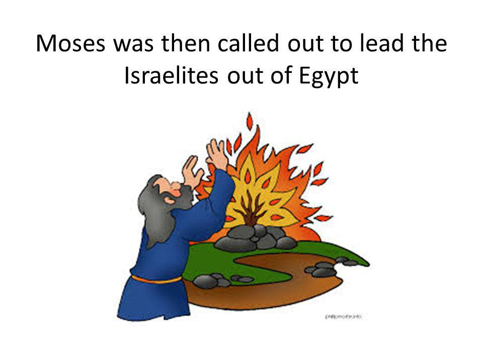 Moses was then called out to lead the Israelites out of Egypt