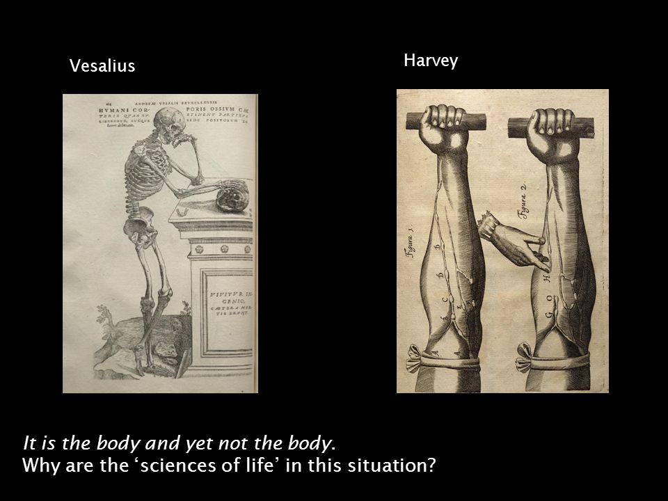 It is the body and yet not the body. Why are the sciences of life in this situation.