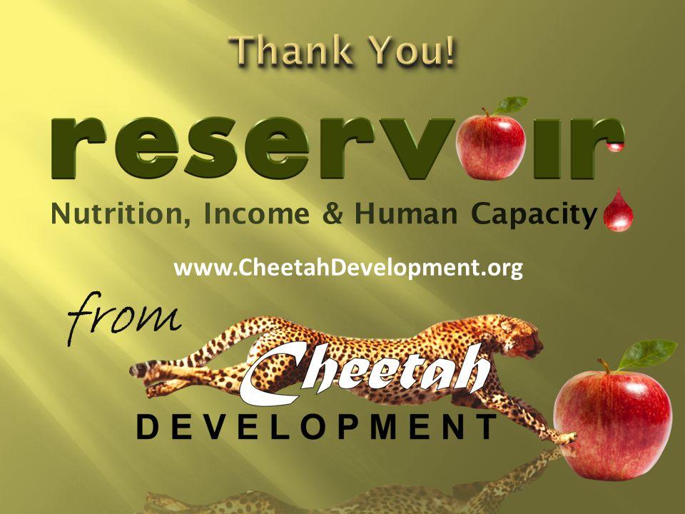 www.CheetahDevelopment.org from