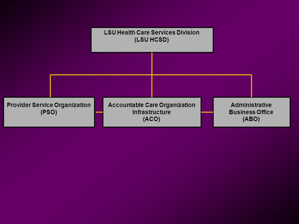 LSU Health Care Services Division (LSU HCSD) Provider Service Organization (PSO) Accountable Care Organization Infrastructure (ACO) Administrative Bus