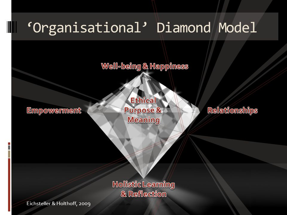 Organisational Diamond Model Eichsteller & Holthoff, 2009