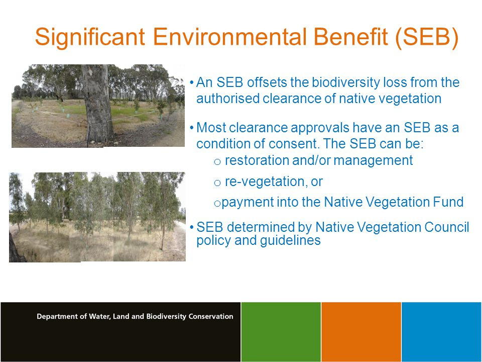 Significant Environmental Benefit (SEB) An SEB offsets the biodiversity loss from the authorised clearance of native vegetation Most clearance approvals have an SEB as a condition of consent.