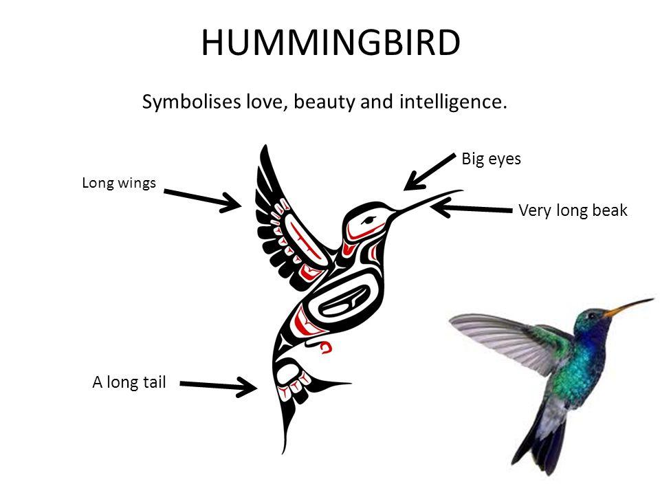 HUMMINGBIRD Symbolises love, beauty and intelligence. A long tail Very long beak Big eyes Long wings