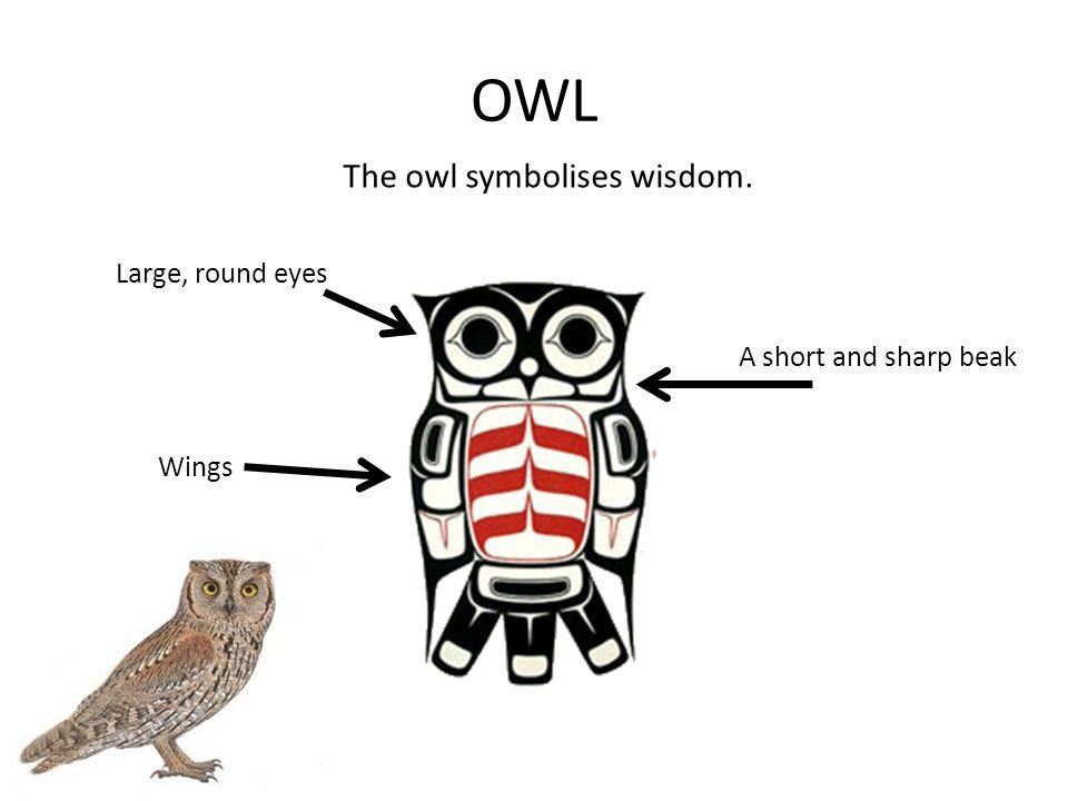 OWL The owl symbolises wisdom. Large, round eyes A short and sharp beak Wings