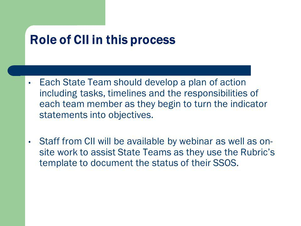 Role of CII in this process Each State Team should develop a plan of action including tasks, timelines and the responsibilities of each team member as they begin to turn the indicator statements into objectives.