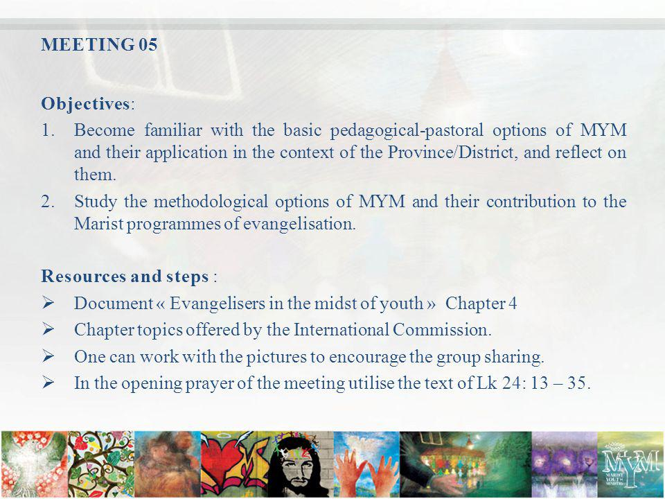 MEETING 05 Objectives: 1.Become familiar with the basic pedagogical-pastoral options of MYM and their application in the context of the Province/District, and reflect on them.