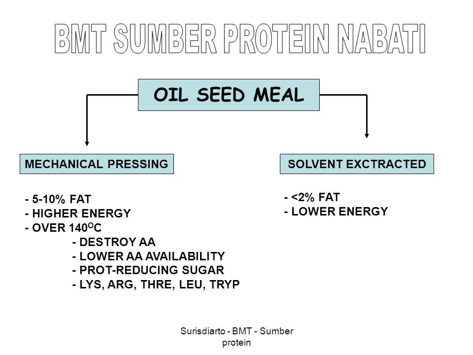 Surisdiarto - BMT - Sumber protein OIL SEED MEAL MECHANICAL PRESSINGSOLVENT EXCTRACTED - 5-10% FAT - HIGHER ENERGY - OVER 140 O C - DESTROY AA - LOWER
