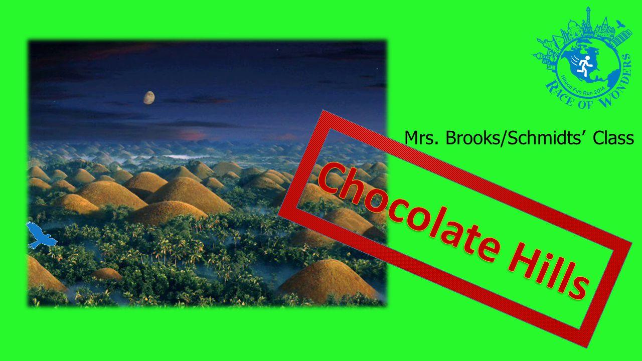 Mrs. Brooks/Schmidts Class