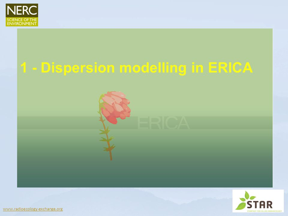 www.radioecology-exchange.org 1 - Dispersion modelling in ERICA
