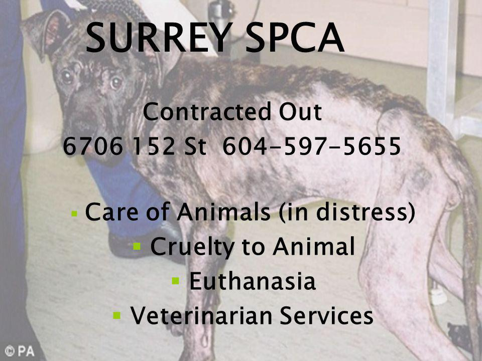 SURREY SPCA Contracted Out 6706 152 St 604-597-5655 Care of Animals (in distress) Cruelty to Animal Euthanasia Veterinarian Services