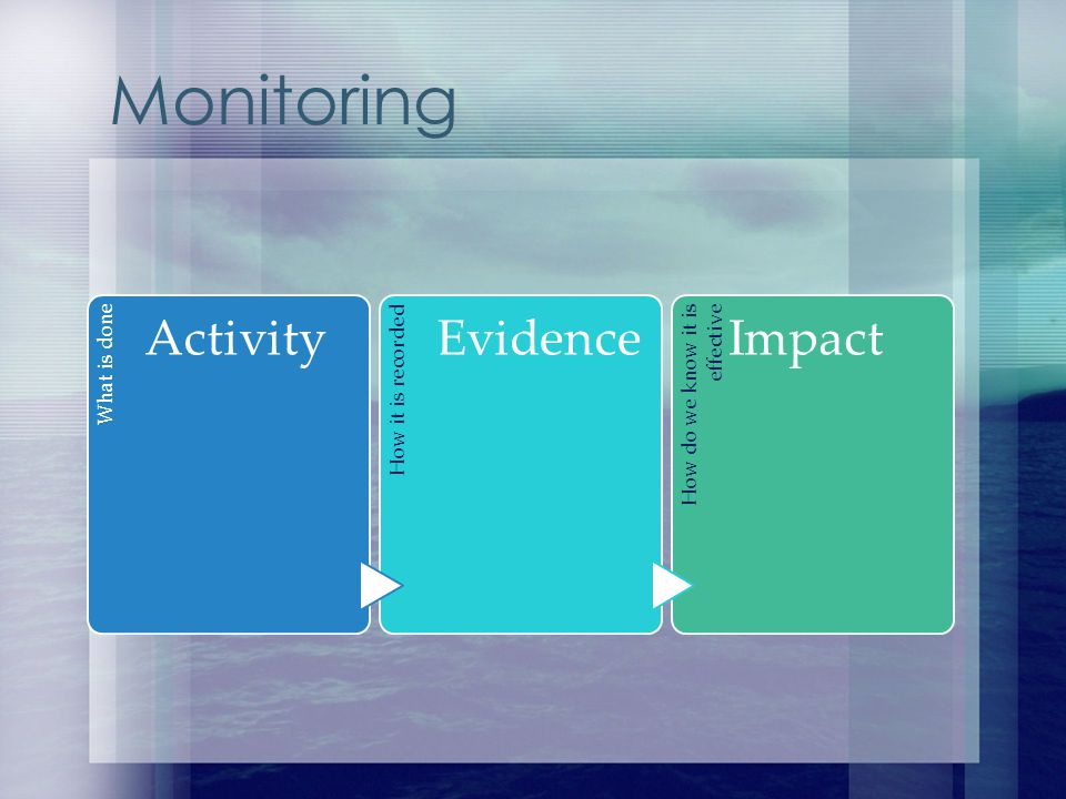 Monitoring What is done Activity How it is recorded Evidence How do we know it is effective Impact