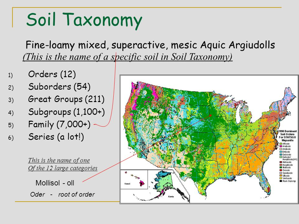 Soil Taxonomy 1) Orders (12) 2) Suborders (54) 3) Great Groups (211) 4) Subgroups (1,100+) 5) Family (7,000+) 6) Series (a lot!) Fine-loamy mixed, sup