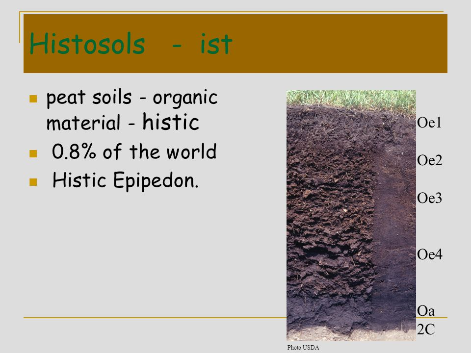 Histosols - ist peat soils - organic material - histic 0.8% of the world Histic Epipedon. Oe1 Oe2 Oe3 Oe4 Oa 2C Photo USDA