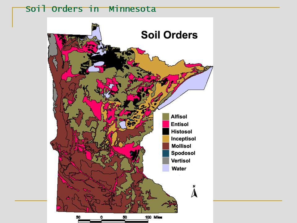 Soil Orders in Minnesota