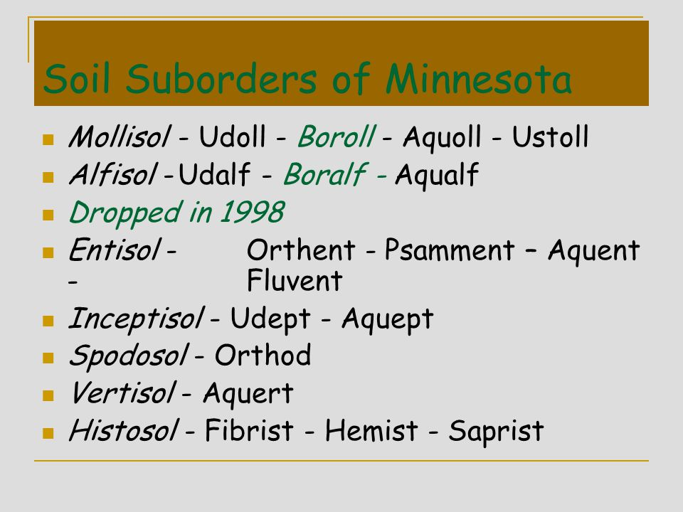 Soil Suborders of Minnesota Mollisol- Udoll - Boroll - Aquoll - Ustoll Alfisol -Udalf - Boralf - Aqualf Dropped in 1998 Entisol -Orthent - Psamment –