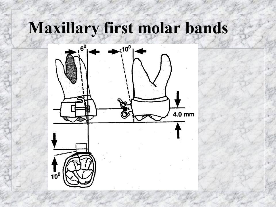 Maxillary first molar bands
