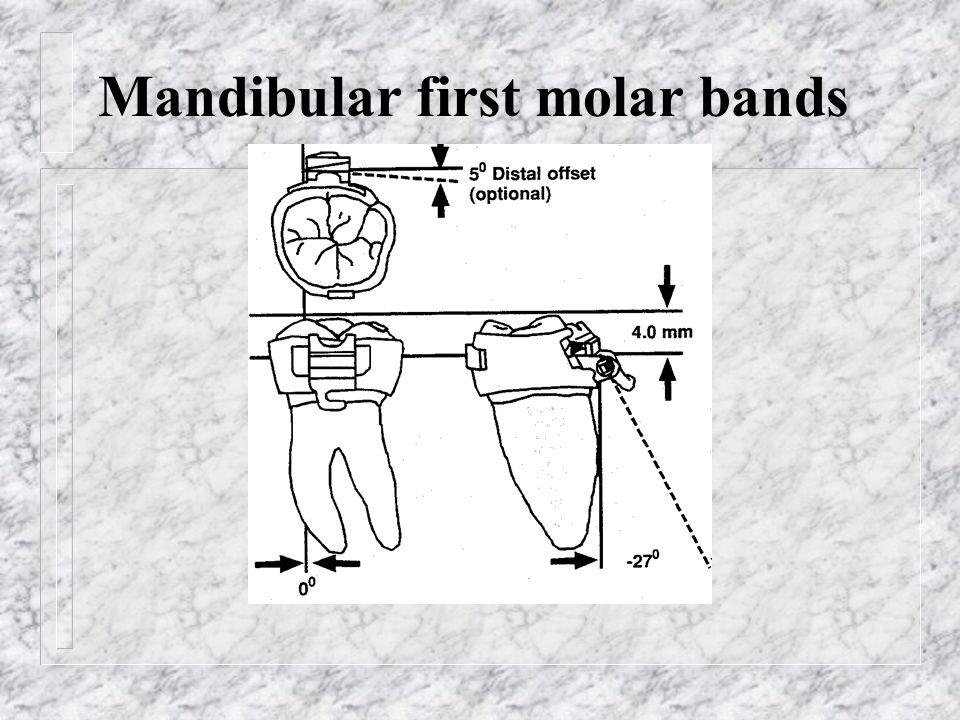 Mandibular first molar bands