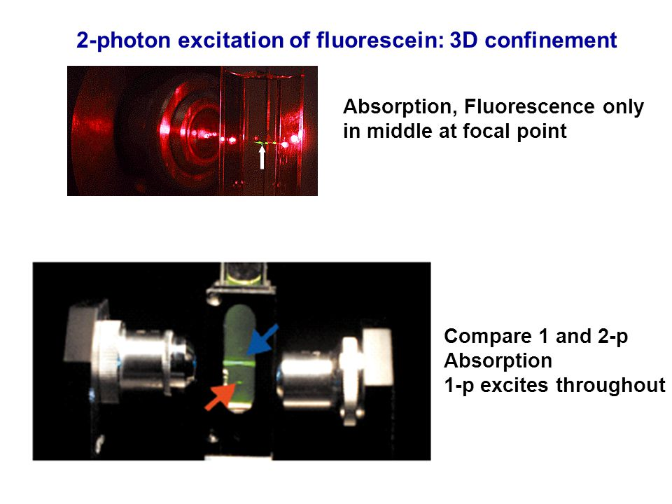 2-photon excitation of fluorescein: 3D confinement Absorption, Fluorescence only in middle at focal point Compare 1 and 2-p Absorption 1-p excites thr