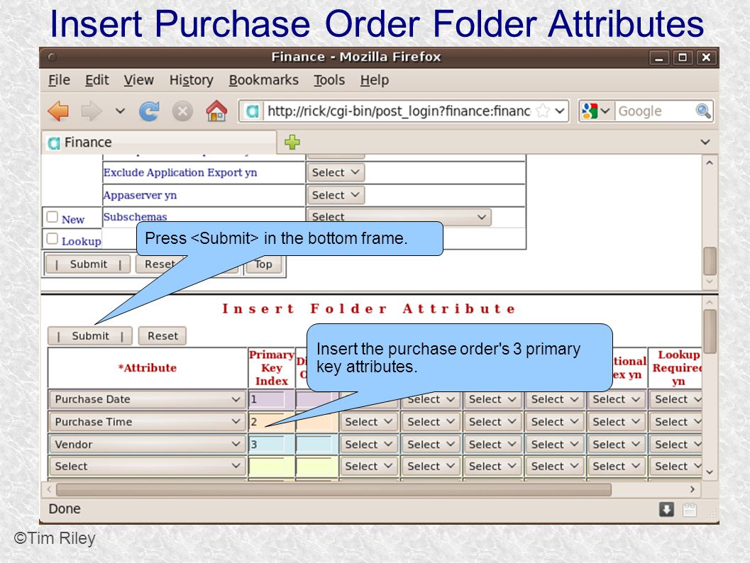 Insert Purchase Order Folder Attributes ©Tim Riley Insert the purchase order s 3 primary key attributes.