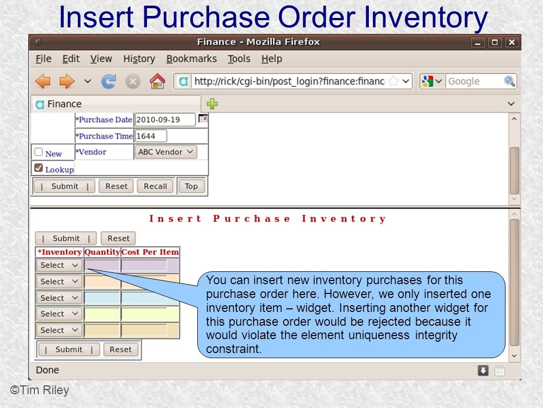 Insert Purchase Order Inventory ©Tim Riley You can insert new inventory purchases for this purchase order here.