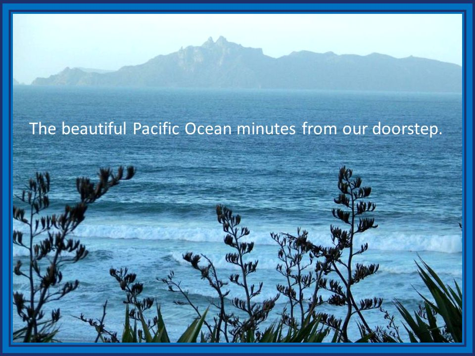 The beautiful Pacific Ocean minutes from our doorstep.