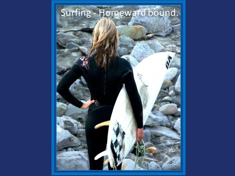 Surfing - Homeward bound.