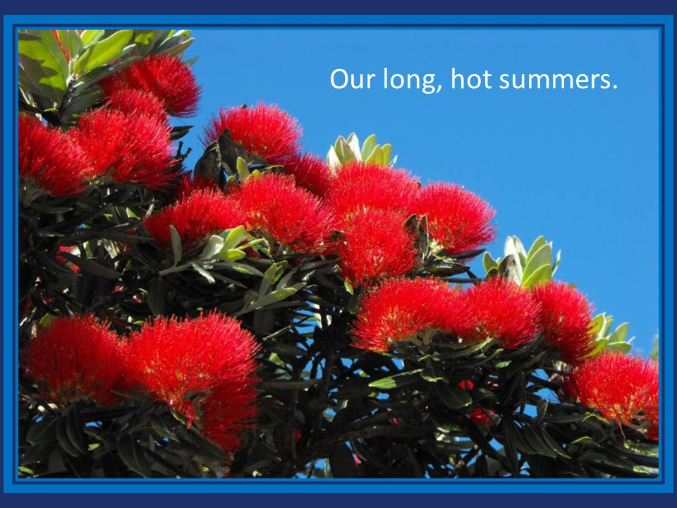 Our long, hot summers.