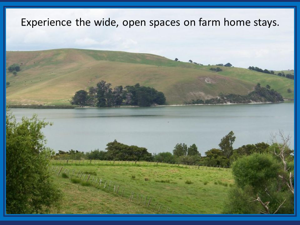 Experience the wide, open spaces on farm home stays.