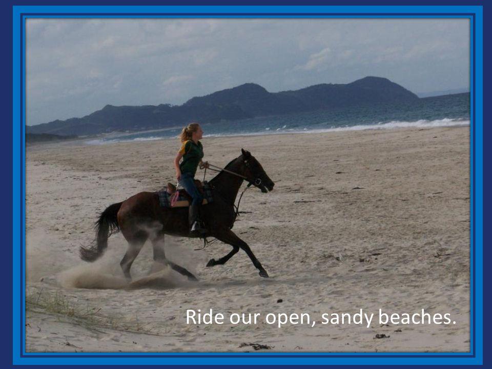 Ride our open, sandy beaches.