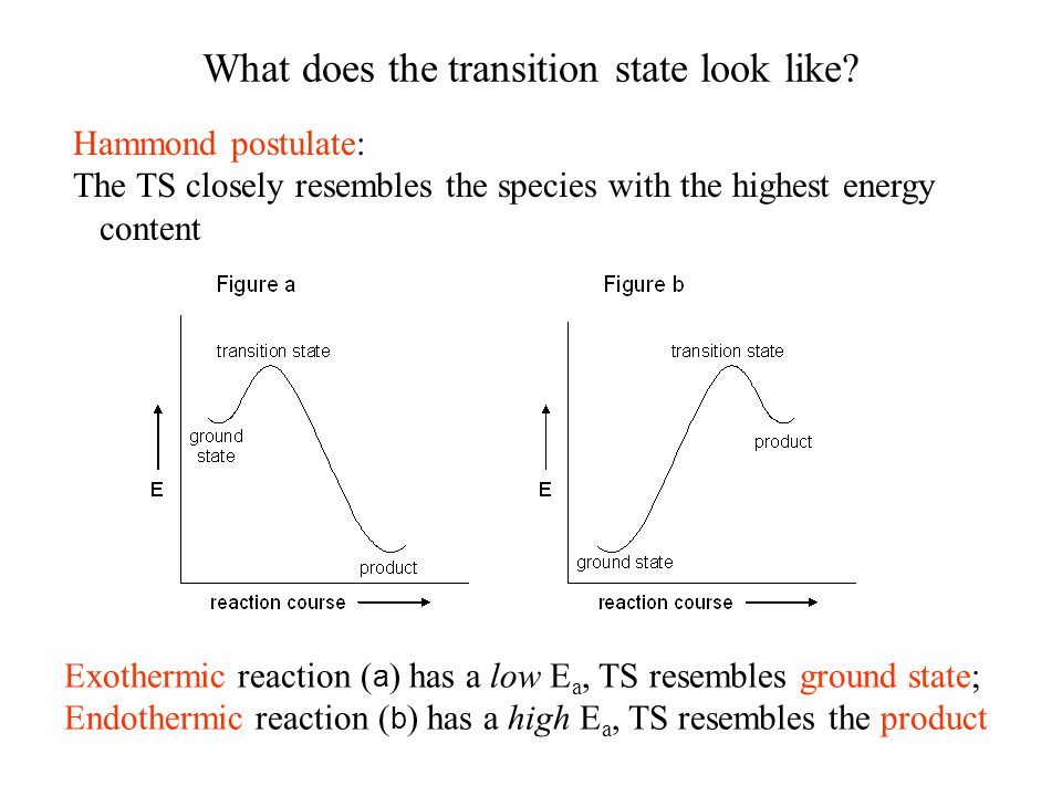 What does the transition state look like.