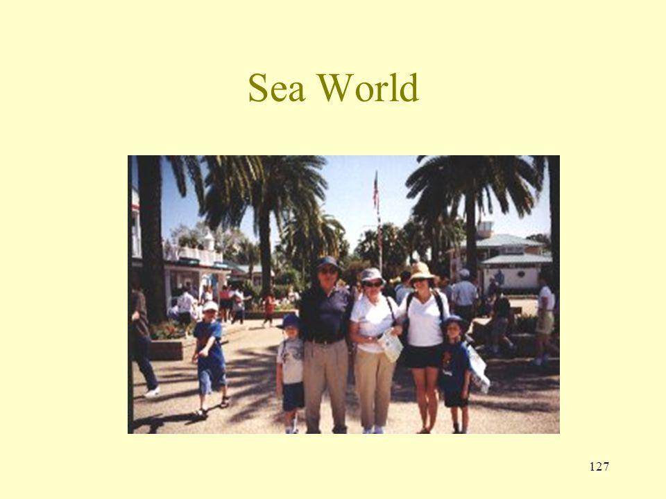 126 95 Sea World