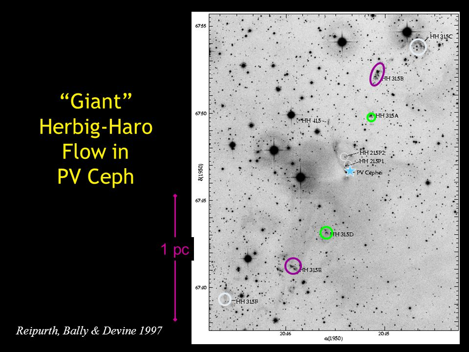 Giant Herbig-Haro Flow in PV Ceph Reipurth, Bally & Devine 1997 1 pc