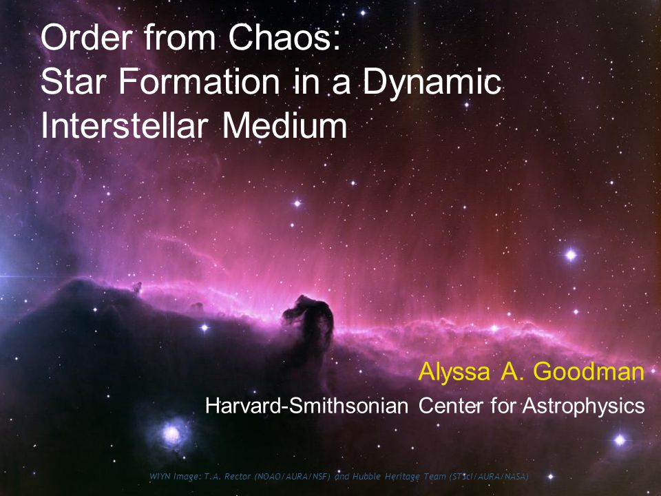 Order from Chaos: Star Formation in a Dynamic Interstellar Medium Alyssa A.