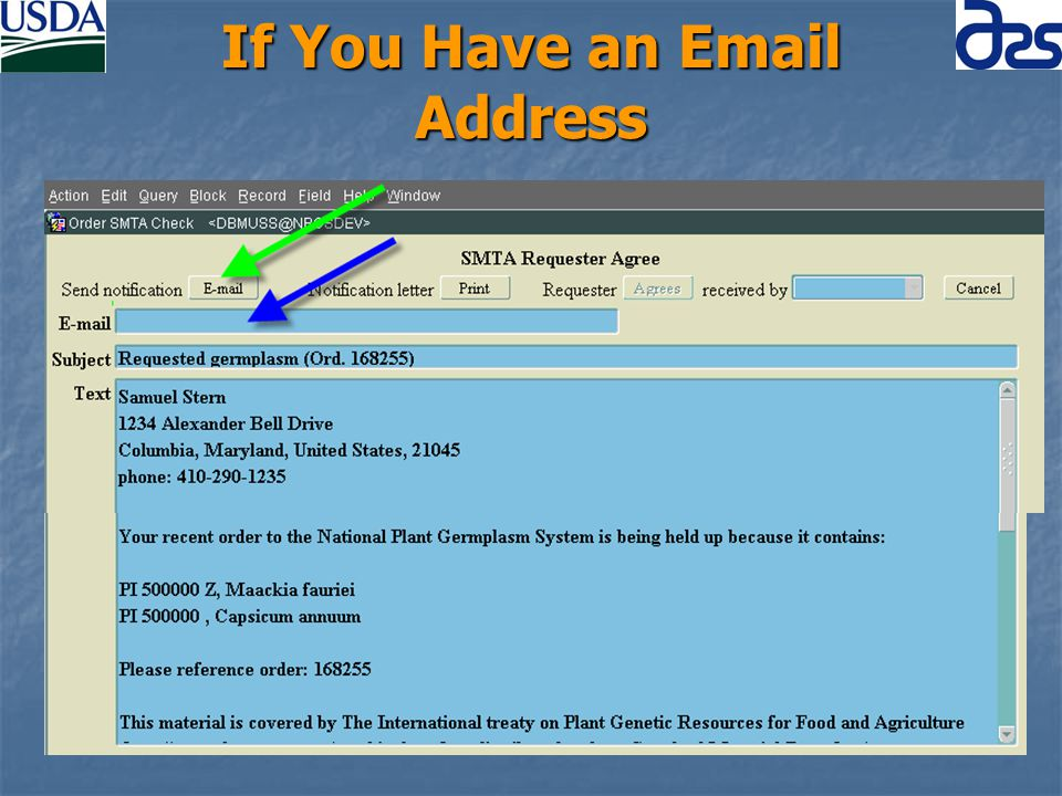 If You Have an Email Address