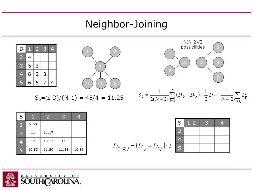 Neighbor-Joining X1235 S 0 =D)/(N-1) = 45/4 = 11.25 D1234 24 353 4623 56574 412XY345 N(N-2)/2 possibilities S1234 2 9.50 3 1111.17 4 1210.1711 5 10.8311.5011.8310.83 S1-234 3 4 5