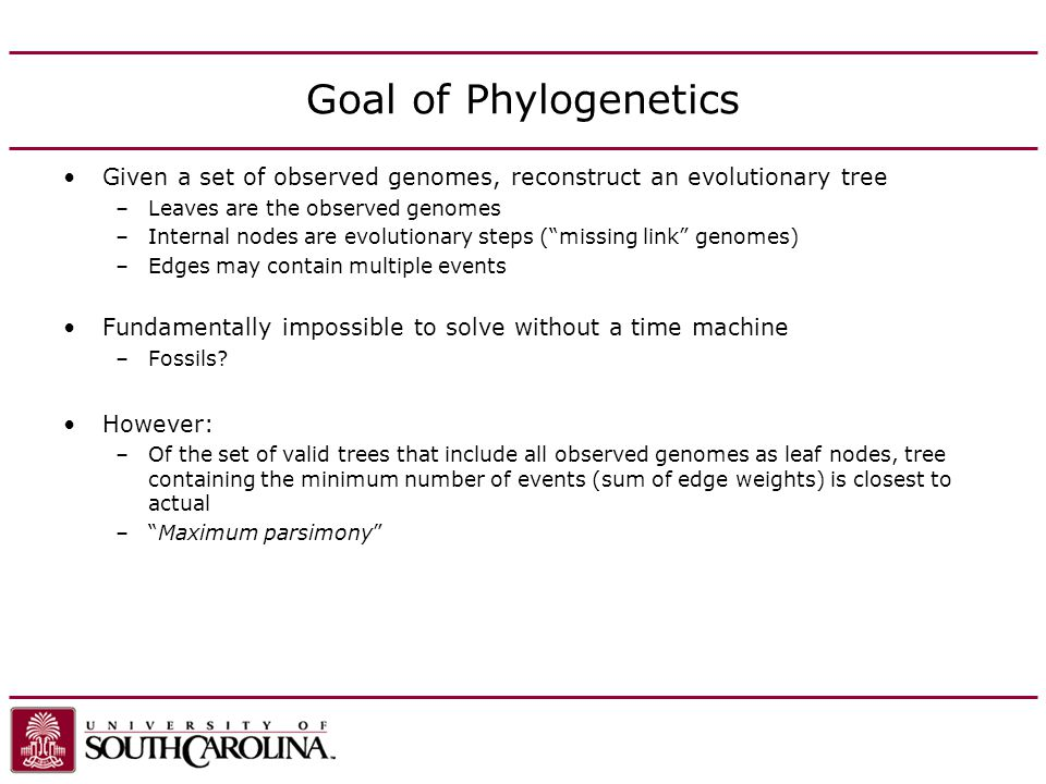 Goal of Phylogenetics Given a set of observed genomes, reconstruct an evolutionary tree –Leaves are the observed genomes –Internal nodes are evolutionary steps (missing link genomes) –Edges may contain multiple events Fundamentally impossible to solve without a time machine –Fossils.