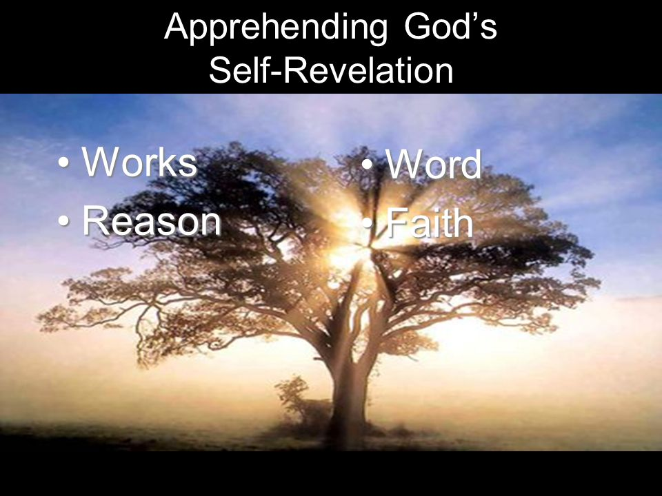 Apprehending Gods Self-Revelation WorksWorks ReasonReason WordWord FaithFaith