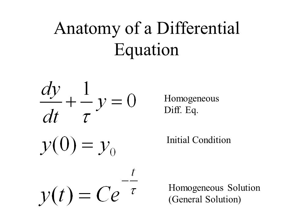 Anatomy of a Differential Equation Homogeneous Diff.