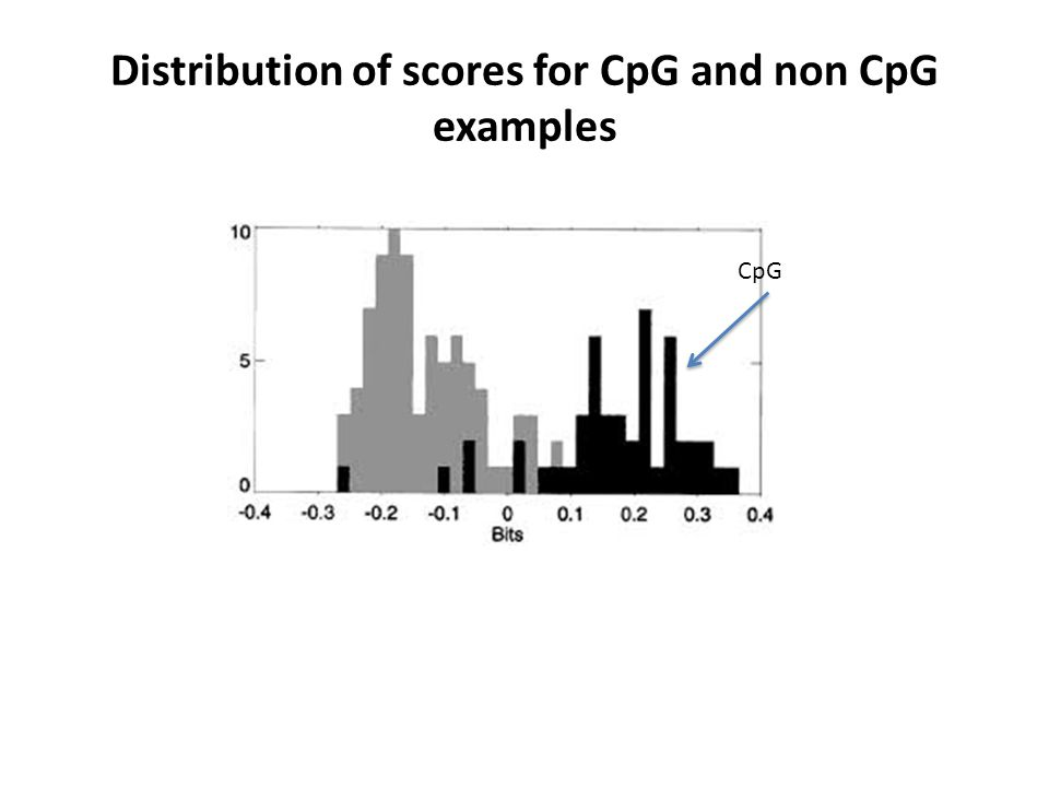 Distribution of scores for CpG and non CpG examples CpG
